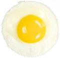 JC Egg
